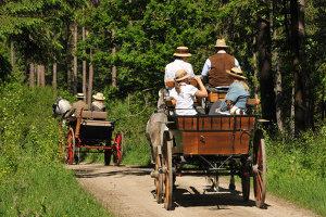 Drehschemellenkung beim Anhänger: Eine Kutsche funktioniert nach einem ähnlichen Prinzip.
