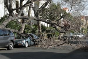 Unfall beim Autofahren im Herbst: Wann zahlt die Versicherung?