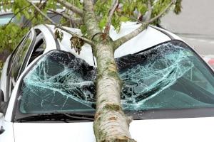 Das Autofahren im Herbst kann gefährlich werden.