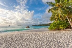 Am Strand gibt es einige Fettnäpfchen, die Ihnen ein Bußgeld während dem Urlaub einbringen können.