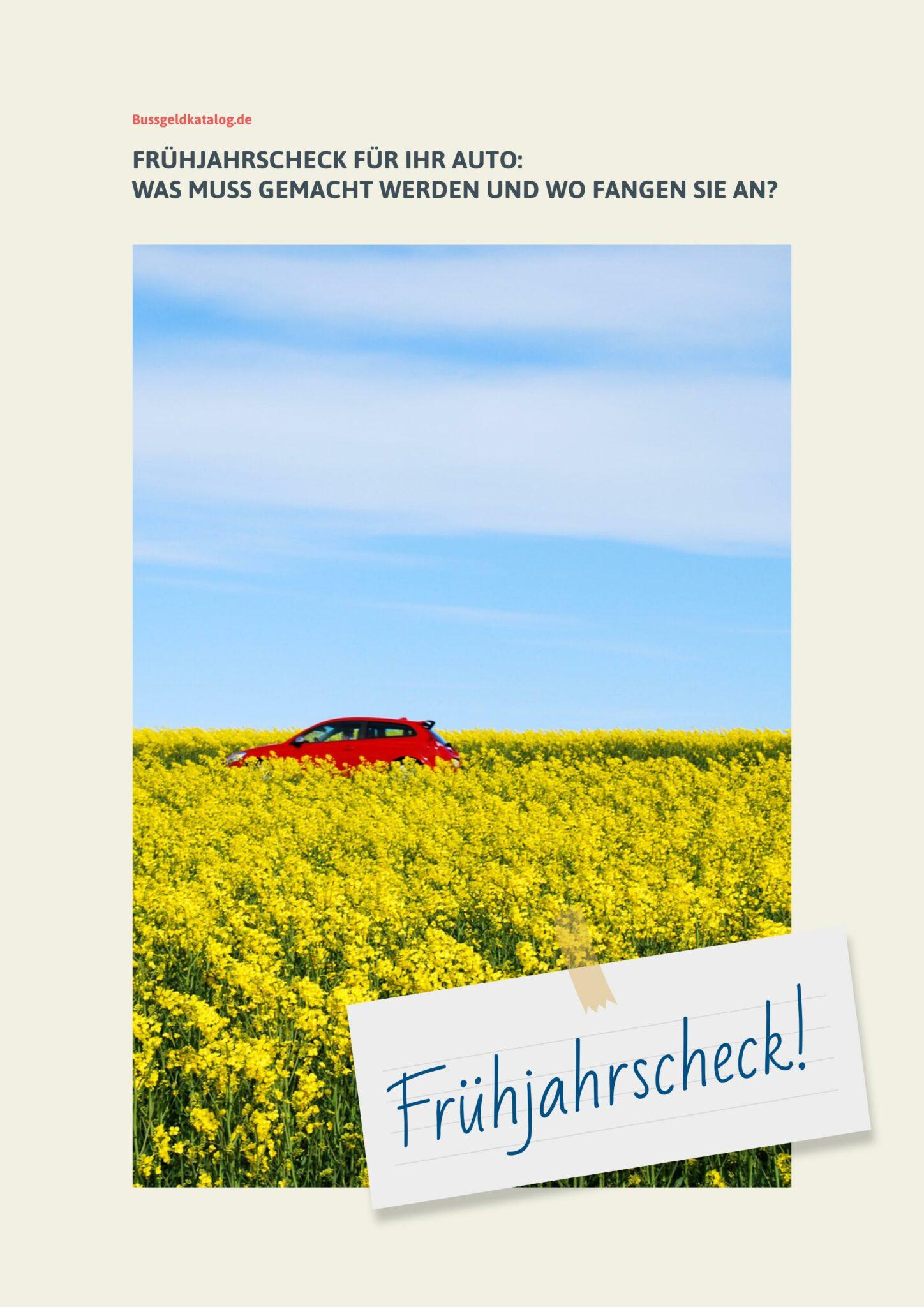 ebook-fruehjahrscheck-auto-bild