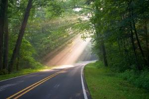 Tagfahrlicht kann zum Beispiel auf Straßen mit wenig Lichteinfall nützlich sein.